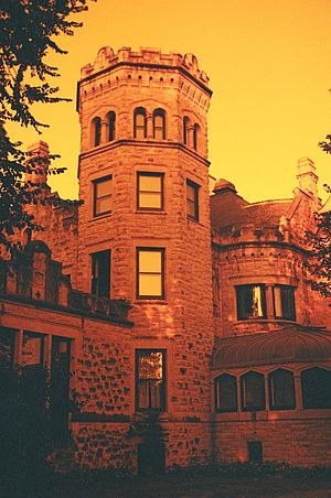 Image created using the redscale technique wit...